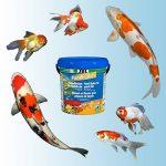 JBL 40199 Nourriture principale pour tous les poissons de bassin, flocons pour bassin, 1 pack de 10,5l de la marque JBL image 2 produit