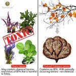Le comparatif de : Plante aquarium TOP 1 image 2 produit