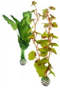 Plante soie aquarium => faites le bon choix TOP 2 image 0 produit