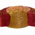 Sera - Koi Professional - Nourriture printemps/automne pour poissons - Carpes koï - 1 x 7 kg de la marque SERA image 4 produit