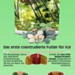 Sera - Koi Professional - Nourriture spécial couleurs pour poissons - Carpes koï - À base de spiruline - 1 x 2.2 kg de la marque SERA image 5 produit