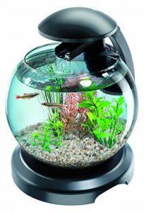 TETRA Cascade Globe Noire - Aquarium pour Poisson Combattant ou Poisson Rouge - 6,8L de la marque Tetra image 0 produit