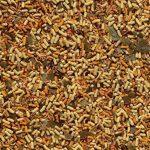 TETRA Pond Goldfish Mix - Aliment Complet pour Poisson Rouge de Bassin de Jardin - 10L de la marque Tetra image 2 produit